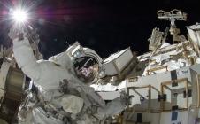 Argos : le manchot royal nous renseigne sur l'état de la planète